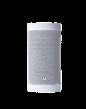 Origin Acoustics - Seasons Outdoor Speaker w/4x8inch Glass Fiber Woofer (White)